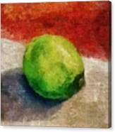 Lime Still Life Canvas Print