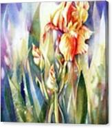 Linda's Iris Canvas Print