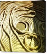 Line Coil Canvas Print
