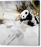 Ling Ling Canvas Print