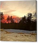 Lingering Winter Canvas Print