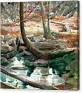 Lingle Stream Canvas Print
