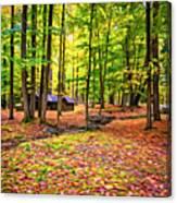 Linn Run Pennsylvania 2 - Paint Canvas Print