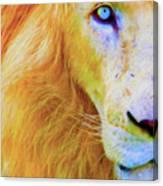 Lion Blue By Nicholas Nixo Efthimiou Canvas Print