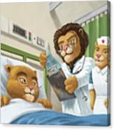 Lion Cub In Hospital Canvas Print