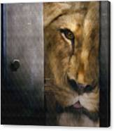 Lion Eye Canvas Print