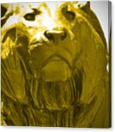 Lion Gold Canvas Print