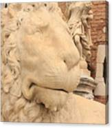 Lion Head In Venice Canvas Print