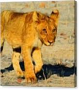 Lion - Id 16235-220310-4716 Canvas Print