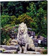 Lion In A Concrete Jungle Canvas Print