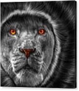 Lion Lady   -3 Canvas Print