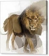 Lion Lion Lion Canvas Print