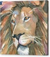 Lion Of Judah Canvas Print