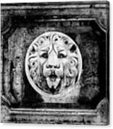 Lion Of Rome Canvas Print