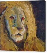Lion two Canvas Print