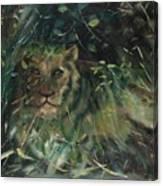 Lioness' Den Canvas Print