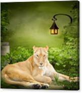 Lioness Dream Canvas Print