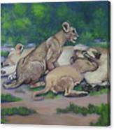 Lioness With Cubs Canvas Print