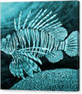 Lionfish On Blue Canvas Print