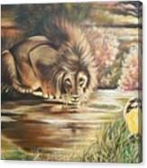 Blaa Kattproduksjoner           Watch  Out For  Yellow  Bird  Canvas Print