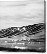 Liquid Silver I Canvas Print