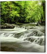 Listening To The Song Of The Stream Canvas Print