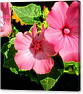 Lite Floral Canvas Print