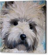 Little Cairn Canvas Print