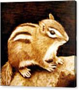 Little Chipper Canvas Print