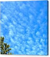 Little Clouds Canvas Print