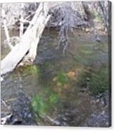 Little Colorado River South Fork Canvas Print