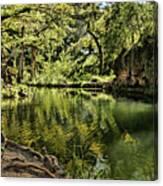 Little Cypress Creek Canvas Print