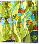 Little Fish Big Pond Canvas Print