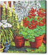 Little Flower Pot Garden Canvas Print