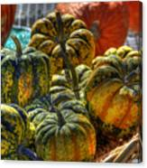 Little Gourds Canvas Print