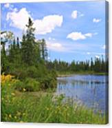 Little Iron Lake Canvas Print