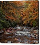 Little Pigeon River In Autumn Canvas Print