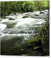 Little River 3 Canvas Print