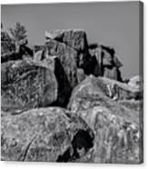 Little Round Top Gettysburg Canvas Print
