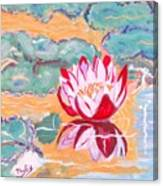 Little Water Lilly  Canvas Print