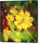 Little Yellow Flowers Canvas Print