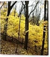 Little Yellow Trees Canvas Print