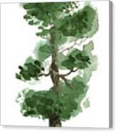 Little Zen Tree 144 Canvas Print