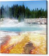 Live Dream Own Yellowstone Park Black Pool Text Canvas Print
