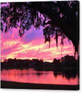 Live Oak Sunset Canvas Print