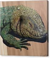 Lizard Art Work Canvas Print