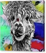Llama And Lady In Splash Canvas Print