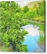 Llano River Scenic Canvas Print