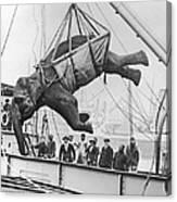 Loading Elephant, 1930s Canvas Print