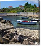 Local Boats In Harbour Canvas Print